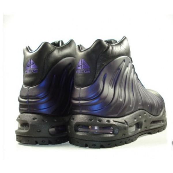 buy popular 70d61 be0bd 333791-504 Nike Foamposite Boot Varsity Purple Black Metallic Silver B08001